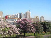 Cidade de Catanduva SP